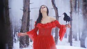La ragazza con un corvo sulla sua mano gode di di sostituire le precipitazioni nevose del fronte archivi video