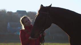 La ragazza con una mano alimenta un cavallo e lo tiene per una ragione Movimento lento archivi video