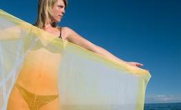 La ragazza con una sciarpa Immagini Stock Libere da Diritti