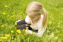 La ragazza considera il fiore dei denti di leone tramite una lente d'ingrandimento Immagine Stock