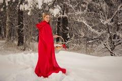 La ragazza in costume poco cappuccio di guida rosso con il cane gradisce un lupo fotografia stock