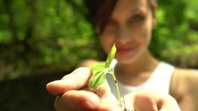 La ragazza dà la manciata di suolo con poca pianta verde video d archivio
