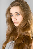 La ragazza dai capelli lunghi Fotografia Stock