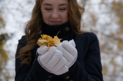 La ragazza dai capelli rossi che tiene le foglie di giallo Immagini Stock