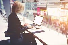 La ragazza dei pantaloni a vita bassa sta lavorando al NET-libro, mentre sta sedendosi nell'interno moderno della caffetteria Immagine Stock Libera da Diritti