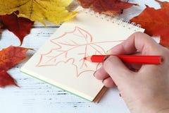 La ragazza dipinge la foglia di autunno dei modelli Immagini Stock