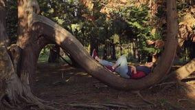 La ragazza dolce sta trovandosi avendo un resto su un tronco semicircolare di grande albero nel parco nei sunlights uguaglianti archivi video
