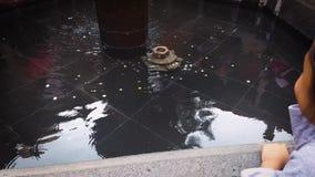 La ragazza e la fontana stock footage