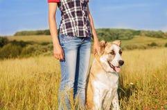 La ragazza ed il pastore centroasiatico camminano nel parco Tiene la d Fotografia Stock Libera da Diritti