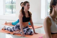 La ragazza fa l'allungamento dell'esercizio di yoga Fotografia Stock