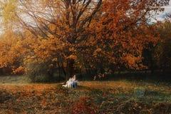 La ragazza gioca con il suo cane in foglie di autunno cadute fotografia stock