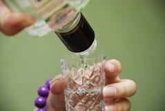 La ragazza giudica la bottiglia della vodka disponibila Immagine Stock
