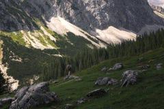 La ragazza gode delle viste della natura del Tirolo fotografie stock