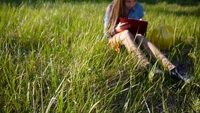 La ragazza graziosa dell'adolescente fa gli schizzi della matita mentre si siede sull'erba verde nel parco Giorno pieno di sole video d archivio