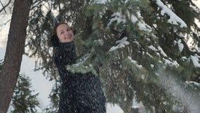 La ragazza graziosa scuote un abete nevoso stock footage