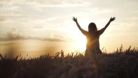 La ragazza ha sollevato le sue mani per incontrare il sole ed il tramonto, stanti nel giacimento di grano HD, 1920x1080, moviment stock footage
