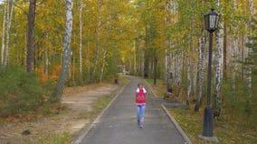 La ragazza ha tappato le sue orecchie con le sue mani ed ha camminato lungo il viale giallo nel parco di autunno stock footage