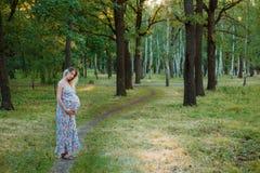 La ragazza incinta cammina nel parco Fotografia Stock