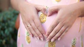 La ragazza incinta piega le sue mani sotto forma di cuore sul suo stomaco video d archivio