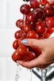 La ragazza lava un mazzo di uva rossa in sue mani Fotografia Stock Libera da Diritti