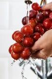 La ragazza lava un mazzo di uva rossa in sue mani Fotografie Stock