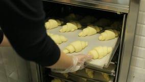 La ragazza mette i croissant bollenti nel forno archivi video