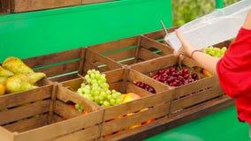 La ragazza mette la frutta in scatole stock footage