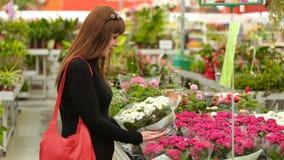 La ragazza nel negozio di fiore video d archivio