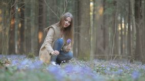 La ragazza nel parco raccoglie i bucaneve stock footage