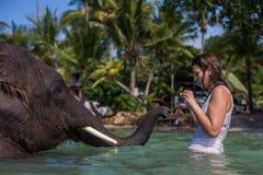La ragazza nuota con l'elefante Fotografia Stock