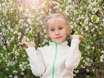 La ragazza in palestra copre di un albero di fioritura del fiore di ciliegia Immagini Stock Libere da Diritti