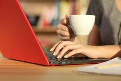 La ragazza passa la verifica la linea con un computer portatile a casa Immagine Stock