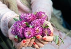 La ragazza passa la tenuta il trifoglio del prato/dei Bu luminosi fiori del trifoglio Immagini Stock
