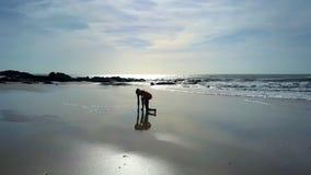 La ragazza pratica l'yoga sul litorale alla siluetta della roccia archivi video