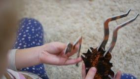 La ragazza raccoglie la formica 3d gioco dei puzzle video d archivio