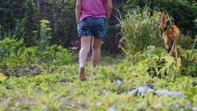 La ragazza scalza del bambino sta camminando sul cortile attraverso l'erba archivi video