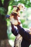La ragazza sorride e tiene un cane dell'Yorkshire terrier nel parco immagini stock