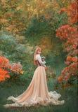 La ragazza splendida incantante con capelli rossi ardenti sta da solo nella foresta di autunno in vestito elegante leggero lungo  fotografia stock