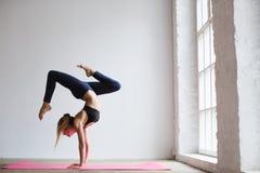 La ragazza sportiva degli Yogi pratica il asana di yoga, la posa Vrischikasana dello scorpione fotografie stock libere da diritti
