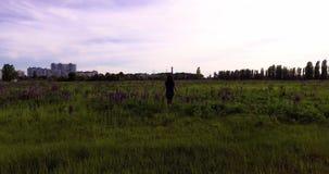 La ragazza sta camminando nel campo fra i fiori dei lupini archivi video