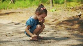 La ragazza sta disegnando con un bastone su un sentiero forestale stock footage
