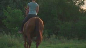 La ragazza sta montando un cavallo archivi video