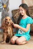 La ragazza sta pettinando il cane Fotografia Stock