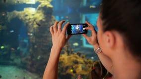 La ragazza sta prendendo i pesci delle foto all'acquario Sta tenendo il suo telefono e sta prendendo le foto stock footage
