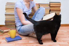 la ragazza sta sedendosi sul pavimento con una tazza di tè e sta leggendo un libro accanto ad un gatto nero immagini stock libere da diritti