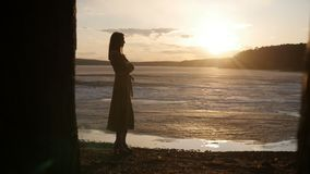 La ragazza sta stando alla riva del lago video d archivio