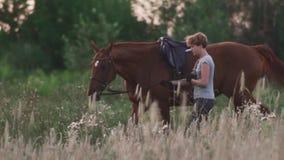 La ragazza sta tenendo il cavallo per le redini stock footage