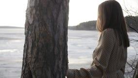 La ragazza sta toccando l'albero archivi video
