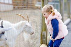 La ragazza sveglia adorabile del bambino che alimentano le piccole capre e le pecore sull'bambini coltivano Bei animali di coccol immagine stock libera da diritti