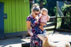 La ragazza sveglia adorabile del bambino e giovane la madre che alimentano le piccole capre e pecore sull'bambini coltivano Belle immagine stock